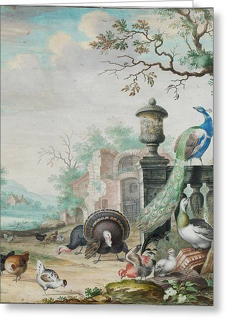 In A Park Greeting Cards - A Peacock a Parrot and other exotic birds in a park landscape Greeting Card by Herman Xenstenburgh