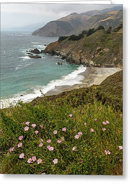 Big Sur Greeting Cards - A Peek of California Pacific Coast Highway Greeting Card by Willie Harper