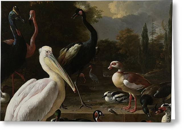 A Pelican And Other Birds Near A Pool Greeting Card by Melchior de Hondecoeter