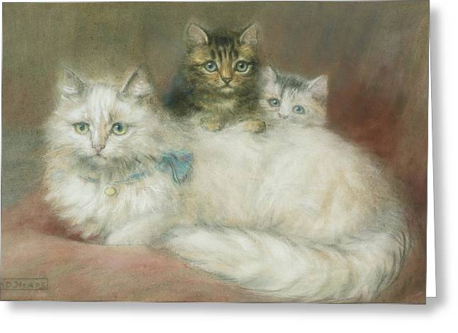 White Paintings Greeting Cards - A Persian Cat and Her Kittens Greeting Card by Maud D Heaps