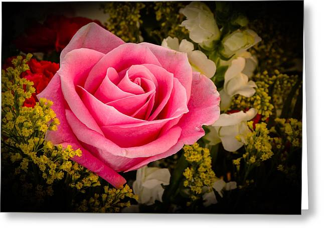 Rose Petals Greeting Cards - A Pink Rose Greeting Card by Brian Alberghini