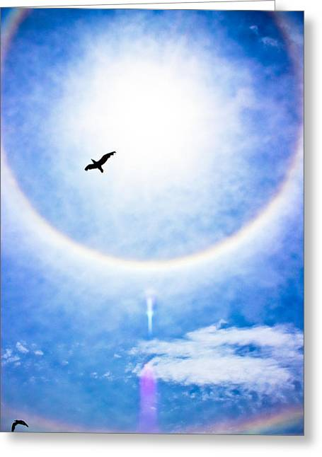 Daydream Greeting Cards - A Place in the Sun Greeting Card by Colleen Kammerer