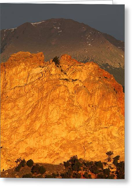 Cathedral Rock Greeting Cards - A Place in the Sun Greeting Card by Eric Glaser