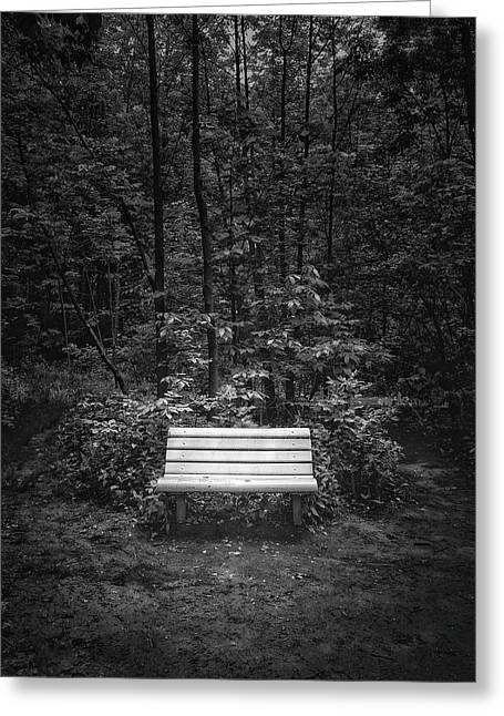 A Place To Sit Greeting Card by Scott Norris