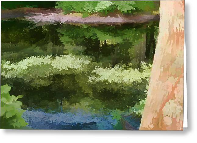 Artistic Landscape Photos Greeting Cards - A Pond Reflection Greeting Card by Tom Prendergast
