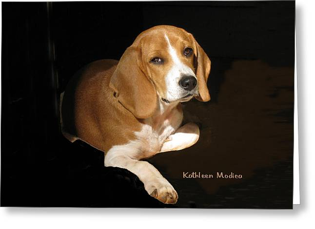 Klm Greeting Cards - A Portrait of Jerry Greeting Card by KLM Kathel