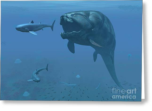 Creature Eating Greeting Cards - A Prehistoric Dunkleosteus Fish Greeting Card by Walter Myers