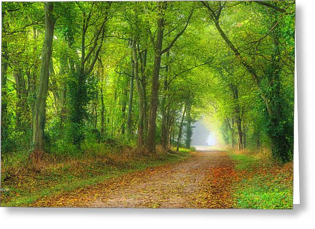 A Quiet Country Lane Greeting Card by Wendell Thompson