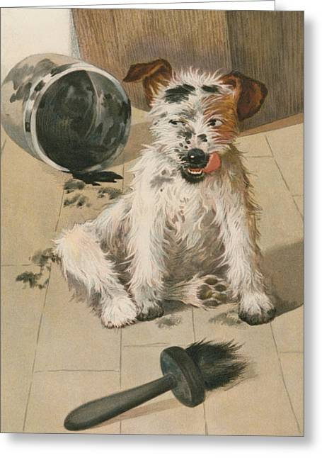 Dog Paw Print Greeting Cards - A Ragamuffin Greeting Card by English School
