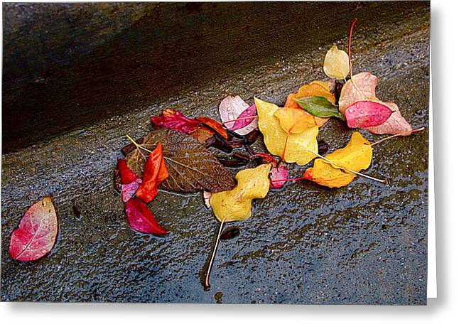 Orange Leaves Greeting Cards - A Rainy Autumn Day in the City Greeting Card by Rona Black
