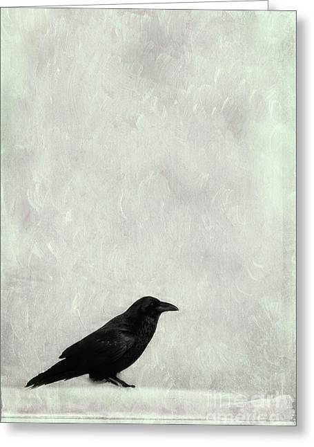 Birds Of A Feather Greeting Cards - A Raven Greeting Card by Priska Wettstein