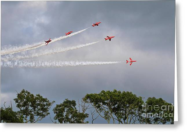 A Red Arrow Fan. Greeting Card by Terri Waters