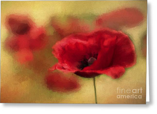 Garden Petal Image Greeting Cards - A Red Poppy Greeting Card by Darren Fisher
