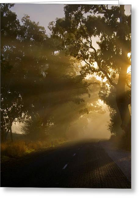 Highway Lights Greeting Cards - A Road less Traveled Greeting Card by Mike  Dawson