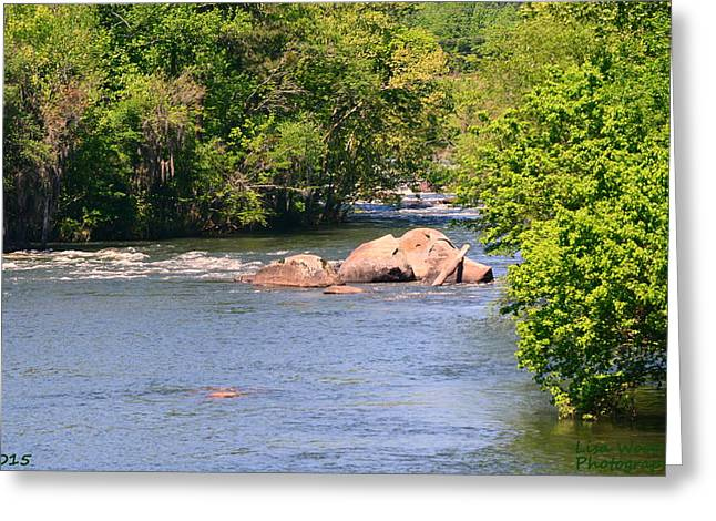 Blue Green Water Greeting Cards - A Rocky Road Greeting Card by Lisa Wooten