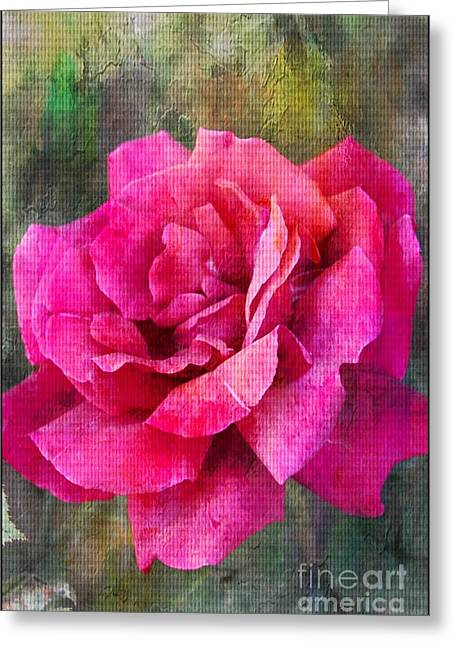 Artistic Photography Greeting Cards - A Rose Canvas Greeting Card by Clare Bevan