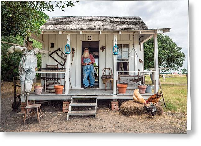 Sharecrop Greeting Cards - A sharecroppers cabin on the George Ranch Historical Park Greeting Card by Carol M Highsmith