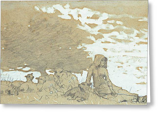 Sheep Drawings Greeting Cards - A Shepherdess Greeting Card by Winslow Homer