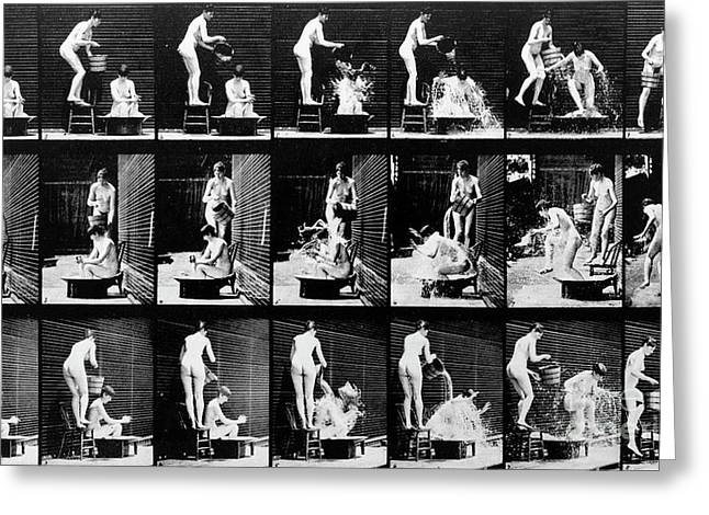 A Shock To The Nervous System Greeting Card by Eadweard Muybridge