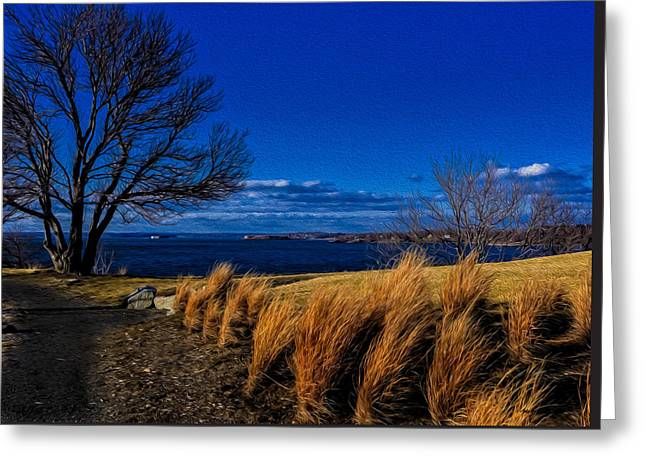 Ocean Art Photography Greeting Cards - A Side Path Greeting Card by Mark Myhaver