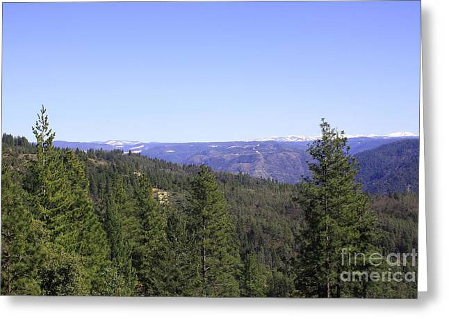 Snow Capped Greeting Cards - A Sierra Afternoon Greeting Card by Mary Chris Hines