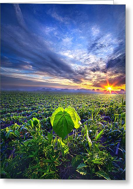 Country Living Greeting Cards - A Single Thought Greeting Card by Phil Koch
