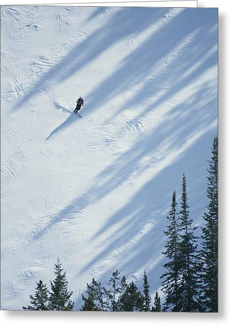 Hotels And Resorts Greeting Cards - A Skier Glides Across A Pine-shadowed Greeting Card by James P. Blair