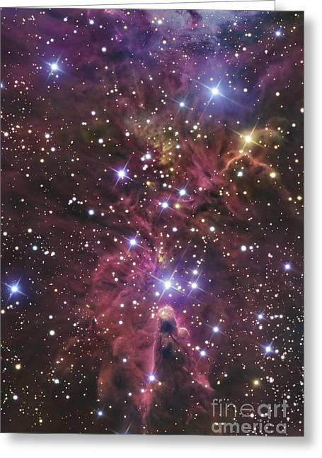 Medium Pink Greeting Cards - A Stellar Nursery Located Towards Greeting Card by R Jay GaBany