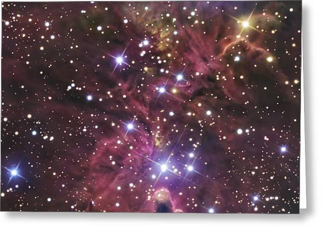 A Stellar Nursery Located Towards Greeting Card by R Jay GaBany