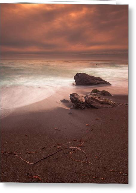 Cambria Greeting Cards - A Subtle Change Greeting Card by Tim Bryan
