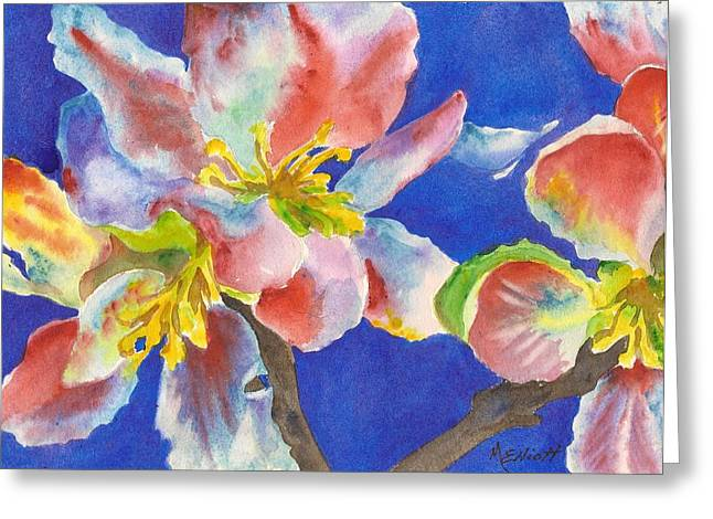 Dogwood Greeting Cards - A Sudden Burst of Color Greeting Card by Marsha Elliott