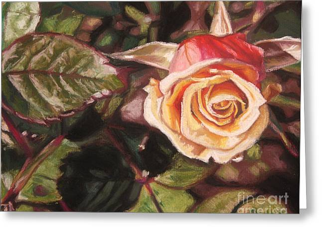 Rose Petals Pastels Greeting Cards - A Summer Day Greeting Card by Melissa Tobia