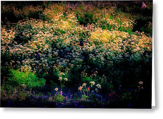 Southern Utah Greeting Cards - A Summer Evening Greeting Card by Grant Sorenson