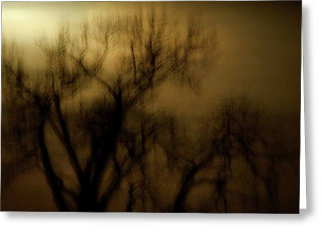 Spooky Trees Greeting Cards - A Surreal Evening Greeting Card by Marilyn Hunt