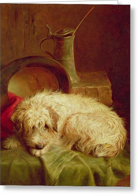 Sleep Paintings Greeting Cards - A Terrier Greeting Card by John Fitz Marshall