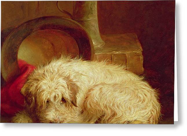 A Terrier Greeting Card by John Fitz Marshall