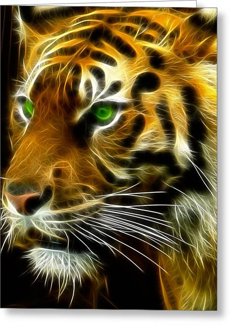 Ncaa Greeting Cards - A Tigers Stare Greeting Card by Ricky Barnard