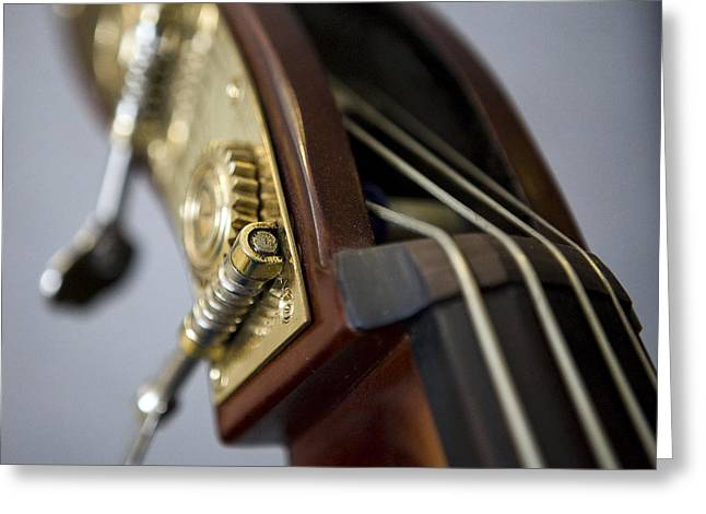 Double Bass Greeting Cards - A Touch of Bass Greeting Card by William Oswald