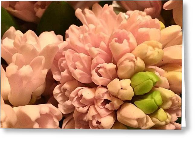 Pink And Green Greeting Card by Althea Morgan-Campbell