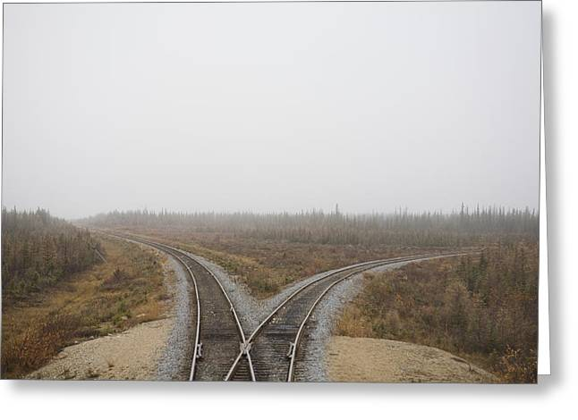 A Train Track Runs Through The Boreal Greeting Card by Taylor S. Kennedy