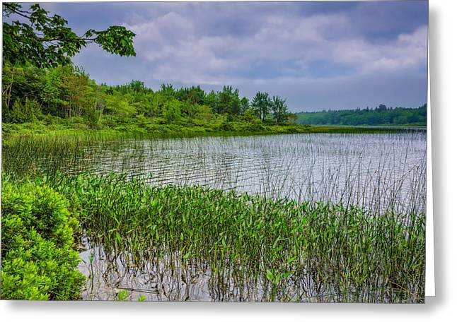 A Tranquil Morning Greeting Card by John M Bailey