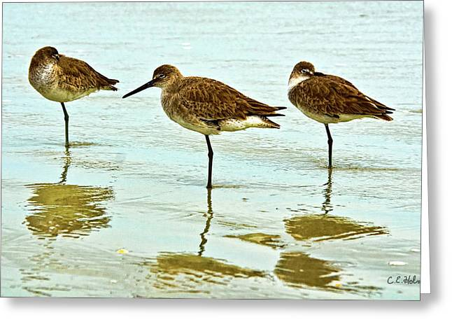 A Trio Greeting Card by Christopher Holmes