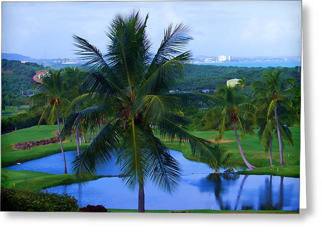 A Tropical View Greeting Card by Roberta Byram