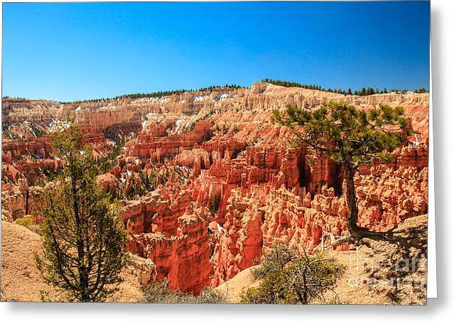 Haybale Greeting Cards - A View From Upper Inspiration Point Greeting Card by Robert Bales