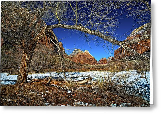 A View In Zion Greeting Card by Christopher Holmes
