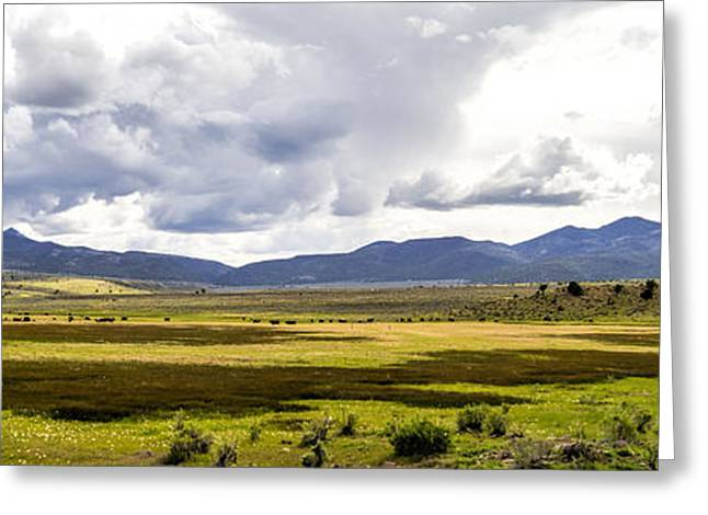 Field. Cloud Greeting Cards - A View of the Pasture Greeting Card by Steve Benefiel
