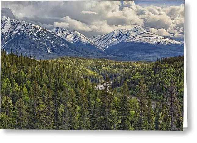 Coast Highway One Greeting Cards - A Viewpoint Along The Stewart Cassiar Greeting Card by Robert Postma