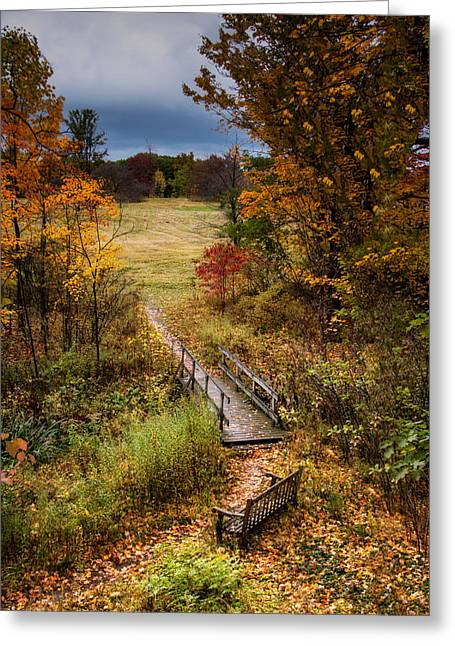 A Walk In The Park I Greeting Card by Tom Mc Nemar
