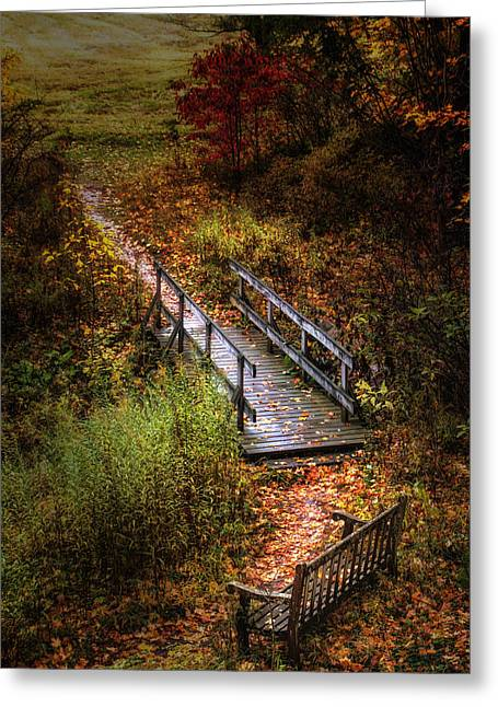 A Walk In The Park II Greeting Card by Tom Mc Nemar