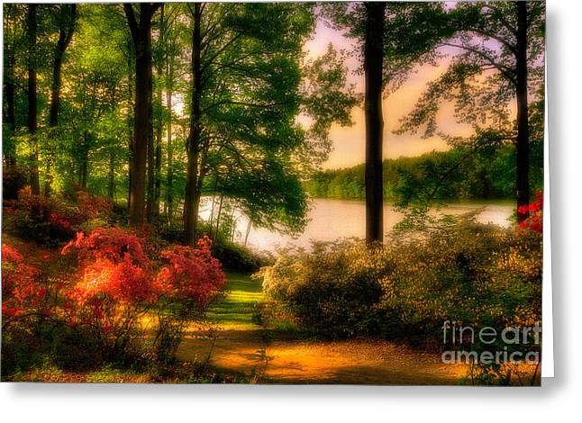 Flowering Bush Greeting Cards - A Walk In The Park Greeting Card by Lois Bryan
